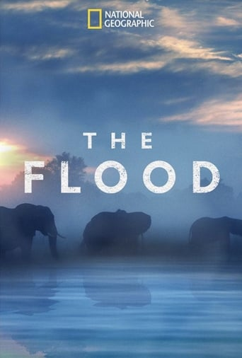 Poster of The Flood
