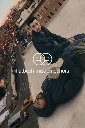 Flatbush Misdemeanors Poster