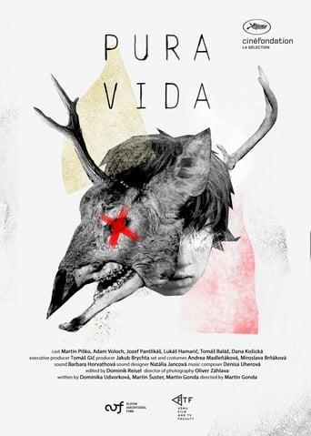 Watch Pura Vida full movie downlaod openload movies
