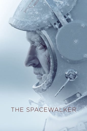 Spacewalk Poster