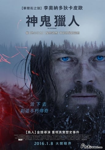 Poster of 荒野獵人