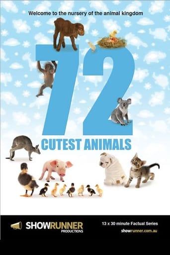 72 Cutest Animals