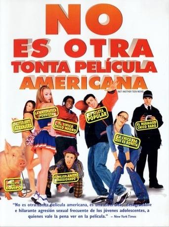 Poster of No es otra estúpida película americana
