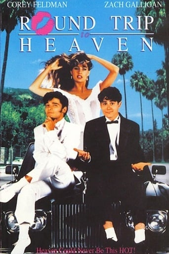 Poster of Round Trip to Heaven