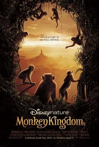 Monkey Kingdom
