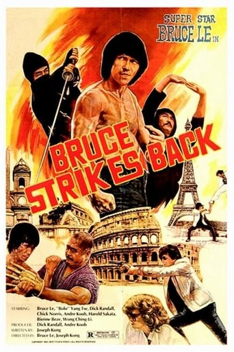 Poster of Bruce Strikes Back