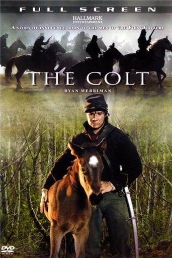 Poster of The Colt
