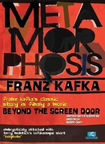Poster of Metamorphosis: Beyond the Screen Door