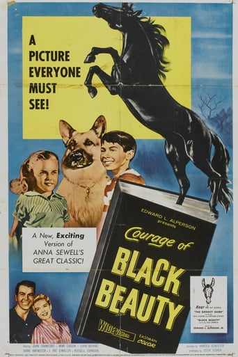 Poster of Courage of Black Beauty