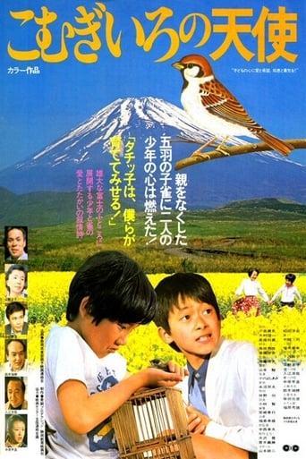 Poster of こむぎいろの天使 雀と少年