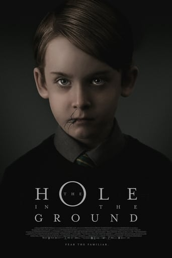 Imagem The Hole in the Ground (2019)