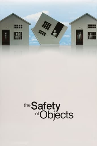 Poster of The Safety of Objects