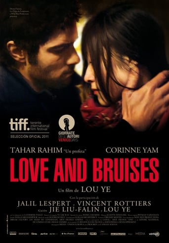 Poster of Love and Bruises