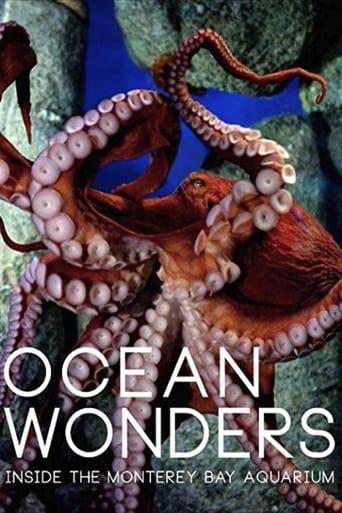 Watch Ocean Wonders - Inside the Monterey Bay Aquarium 2015 full online free