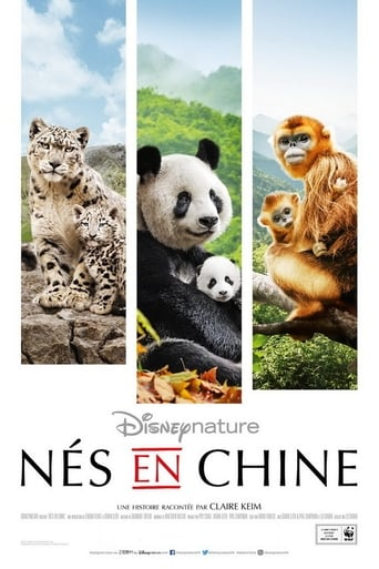 Poster of Nés en Chine