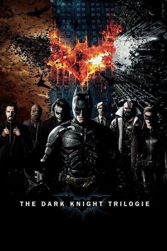 Batman : The Dark Knight - Saga