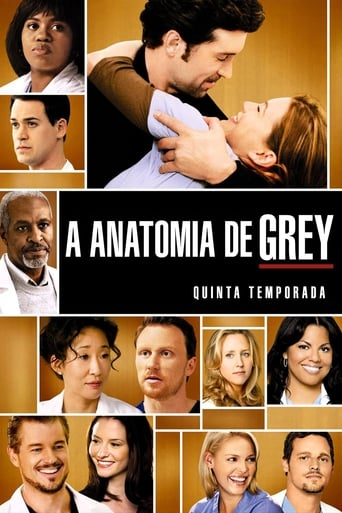 Anatomia de Grey 5ª Temporada - Poster