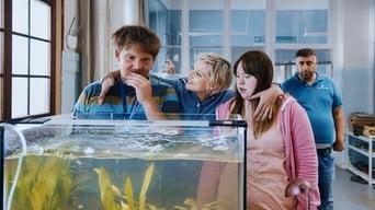 The Goldfish (2019)