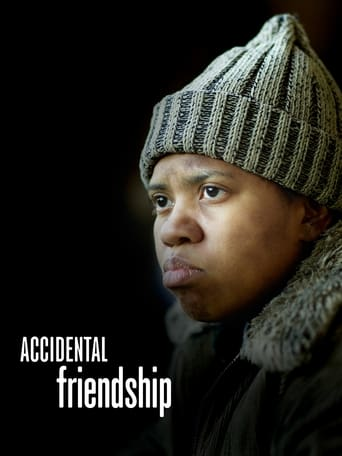 Poster of Accidental Friendship