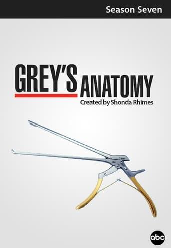 Grei anatomija / Grey's Anatomy (2010) 7 Sezonas LT SUB