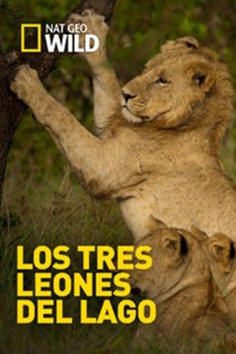 Los Tres Leones Del Lago