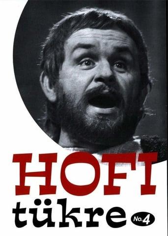 Hofi tükre No.4