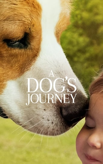 Poster of A Dog's Journey