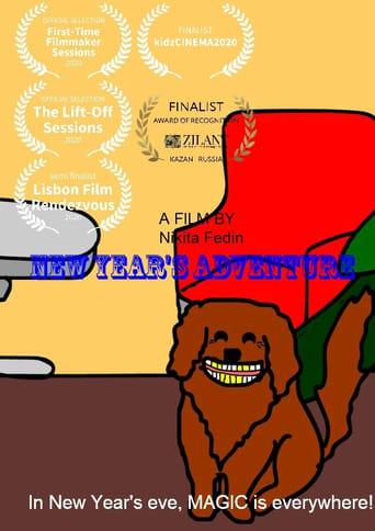 New Year's Adventure (2020)
