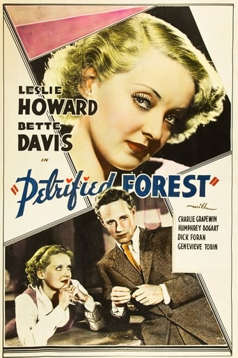 The Petrified Forest Poster