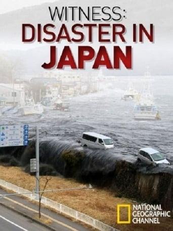 Japans Erdbebenkatastrophe