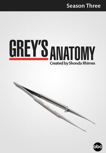 Grei anatomija / Grey's Anatomy (2006) 3 Sezonas