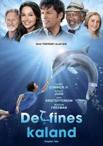 Poster of Delfines kaland