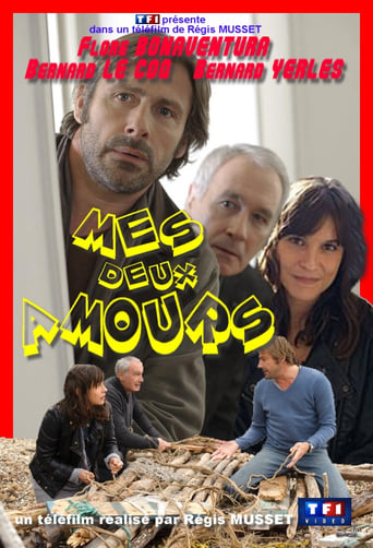 Poster of Mes deux amours