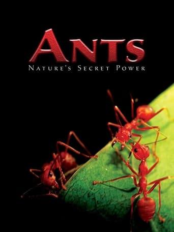 Ants - Nature's Secret Power