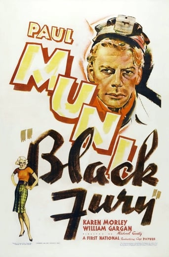 Black Fury poster