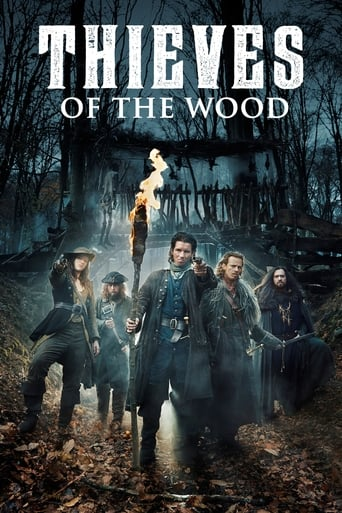 Poster of Thieves of the Wood