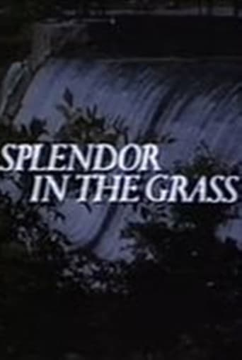 Poster of Splendor in the Grass
