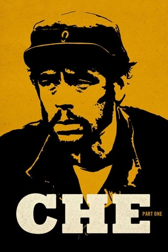 Poster of Che: Part One