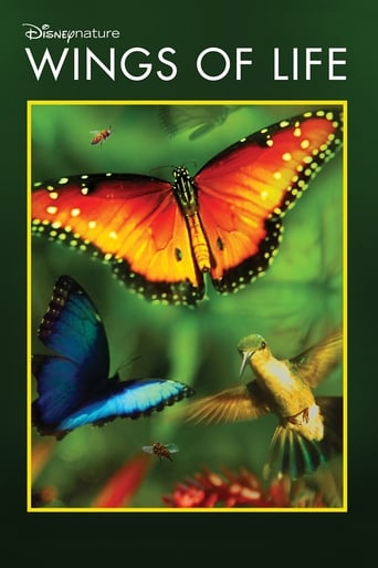 Watch Wings of Life 2011 full online free