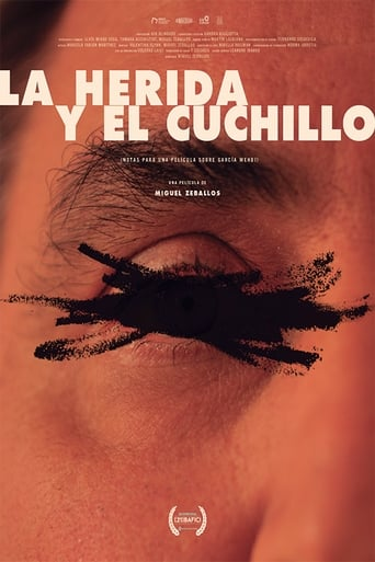 The Wound and the Knife (Notes for a Film About García Wehbi)