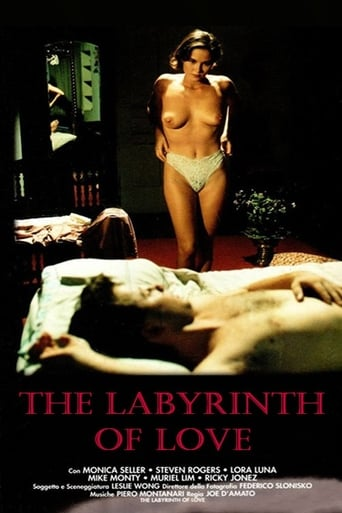 The Labyrinth of Love Movie Poster