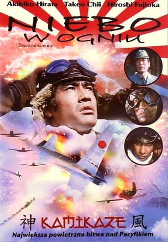 Poster of Zero Fighter