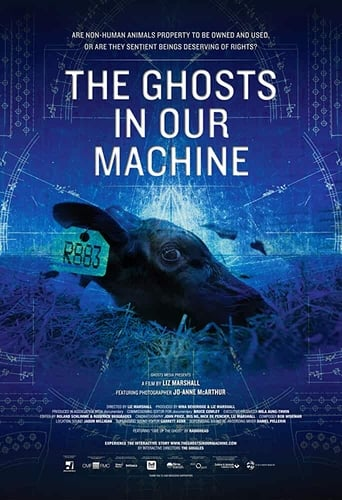 Poster of The Ghosts in Our Machine