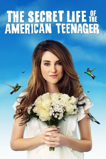 Poster of The Secret Life of the American Teenager