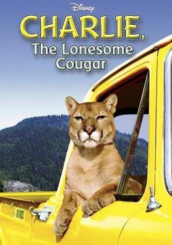 Der einsame Puma