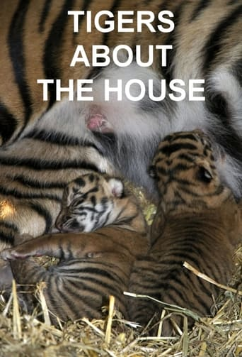 Tigers About the House - 2014 / 2 Staffeln