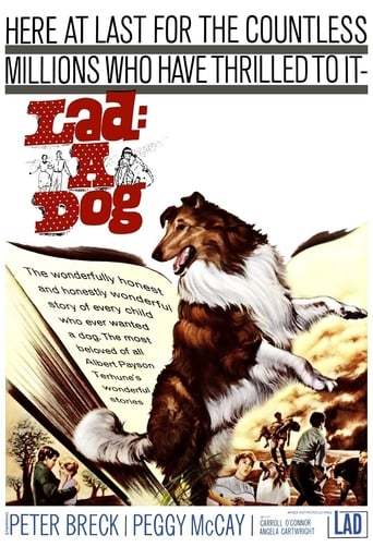 Poster of Lad: A Dog