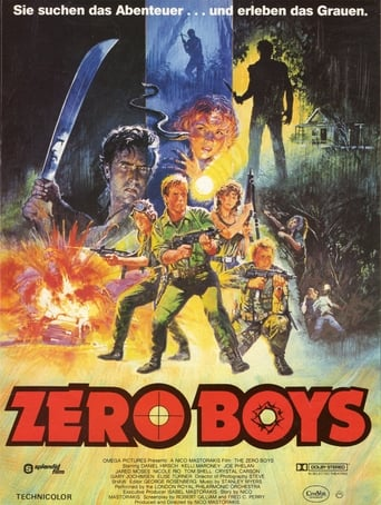 Poster of The Zero Boys