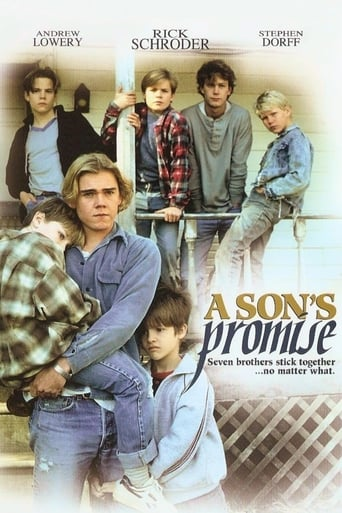 Poster of A Son's Promise
