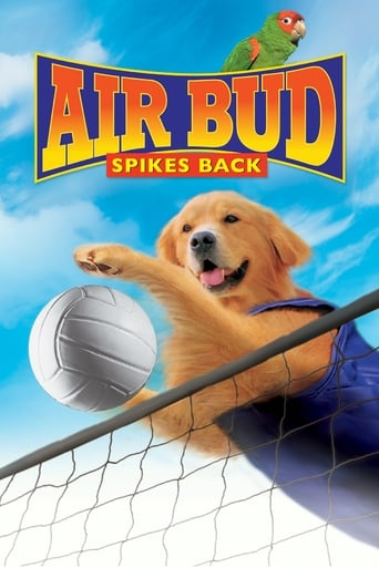 Poster of Air Bud: Spikes Back